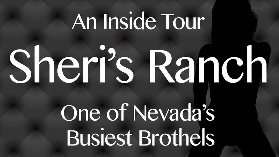 Brothel Prices Nevada